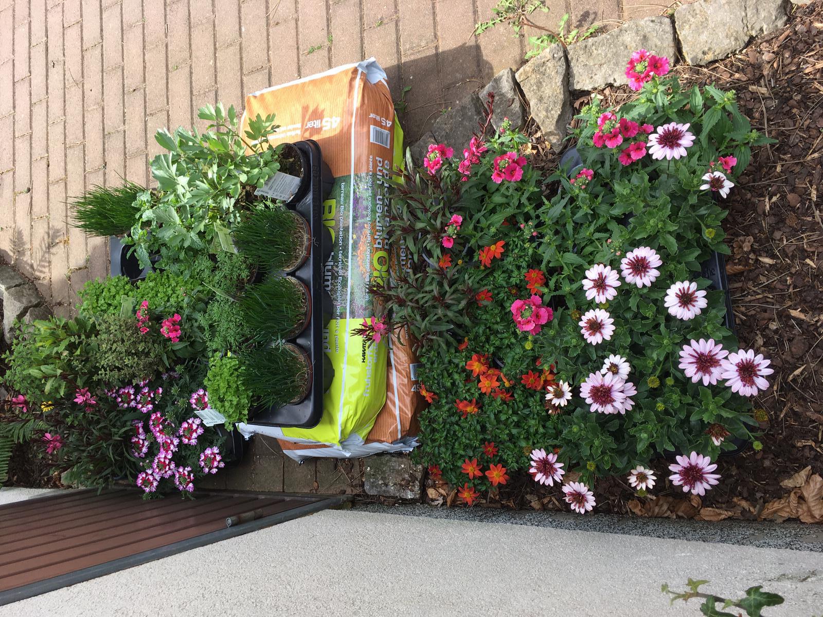 Beschäftigung im Garten